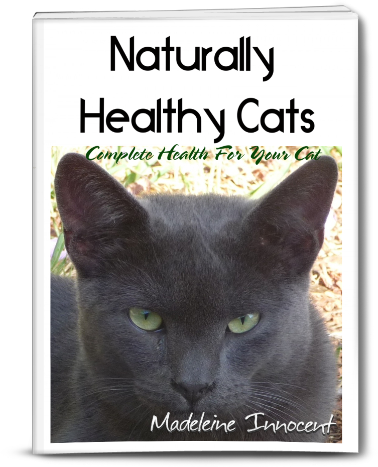 Image of Complete Health For Your Cat - Naturally